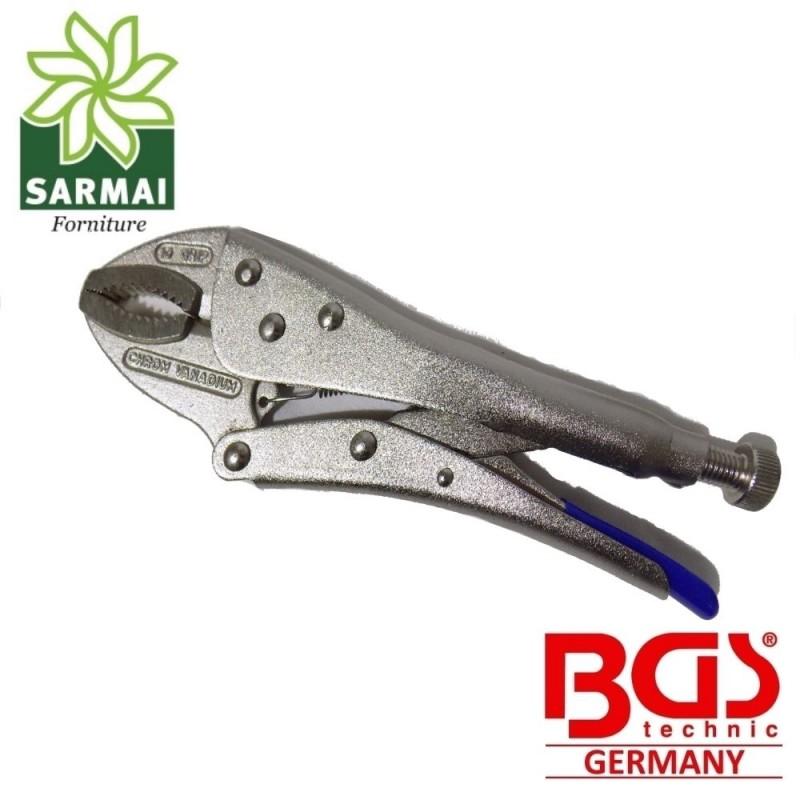 """Pinza Autobloccante """"EXPERT"""" 250 mm CHROME VANADIUM professionale BGS 4491"""
