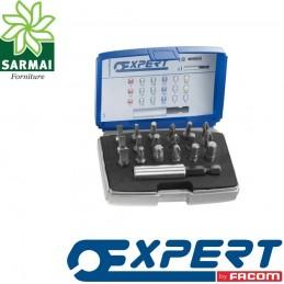EXPERT PASTORINO E113901 SET INSERTI 1/4 INTAGLIO PHILLIPS POZIDRIV TORX 19 PZ